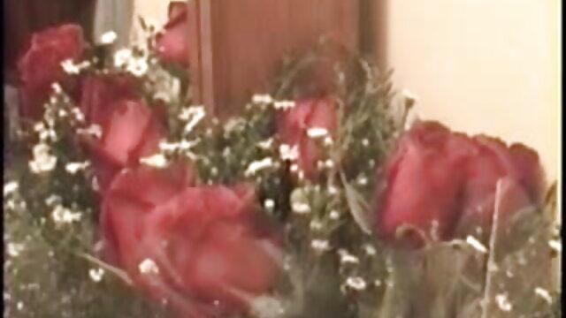 कोई पंजीकरण Porno  घर की फुल सेक्सी एचडी मूवी सफाई